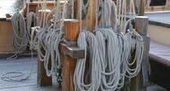 photo diaporama sorties semaine du golfe : de l'ile-aux-moines � vannes, toutes les photos de mercredi !