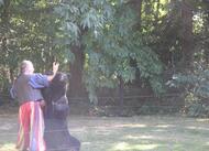grand-fougeray. retour en images sur la fête médiévale