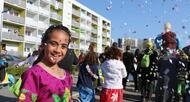 photo diaporama info vannes. retour en photos et vid�o sur l'incroyable carnaval de m�nimur