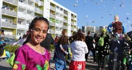 photo diaporama info vannes. retour en photos et vidéo sur l?incroyable carnaval de ménimur