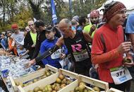10 km « le maine libre ». la course en images [photos - vidéo]
