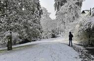 sarthe. ils ont profité de la neige [photos]
