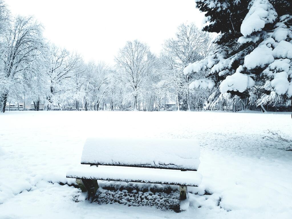 Vos plus belles photos du Grand Ouest sous la neige ! - Diaporama angers -  Angers.maville.com