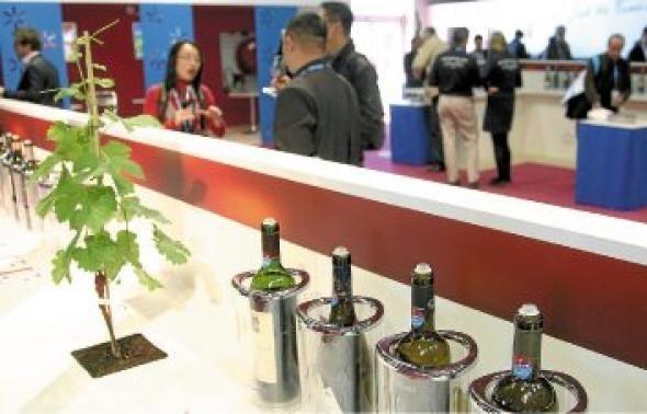 photo la marque sud de france permet aux vins locaux d'être mieux identifiés. ©  n.guyonnet / mds / 20minutes