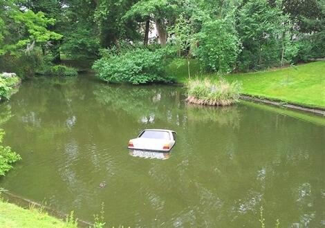 Nantes. La voiture se la coule douce au Jardin des plantes. Info ...