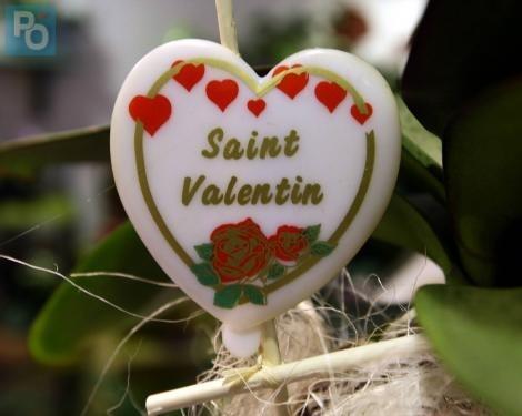 Saint-Valentin. Toutes les déclarations d amour publiées ici© Archives PO c42ea8d4df0