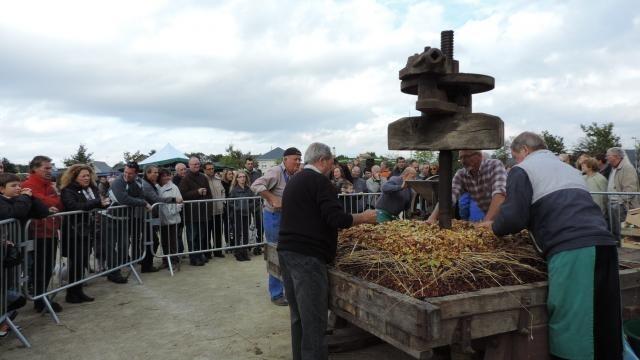 Artisanat : La Fête du cidre invite les Templiers autour du pressoir - maville.com