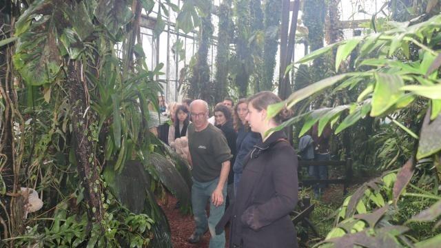 Au jardin des plantes : Lundi, les arbres voyageurs - Nantes.maville.com