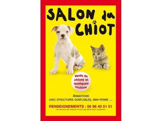 Salon Du Chiot Internaute Rennesmavillecom