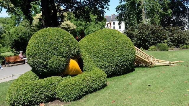 Jardin des plantes : Derniers jours pour voir le poussin de Ponti ...