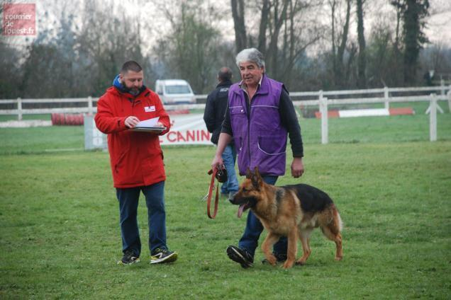 club canin saumur
