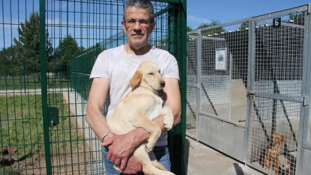 Le Refuge Spa De Cholet Ouvre Ses Portes Pour Un Week End D Adoption Cholet Maville Com
