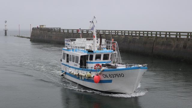 promenade bateau deauville