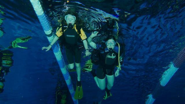 Le Club Subaquatique Lorientais Le Milieu Marin Passionnement
