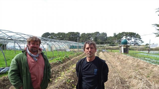 Groix. A Kerdurand, deux frères, une friche et un jardin - Vannes ...