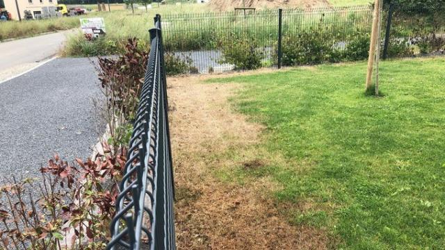 Un mystérieux vandale asperge leur jardin d\'herbicide en leur ...