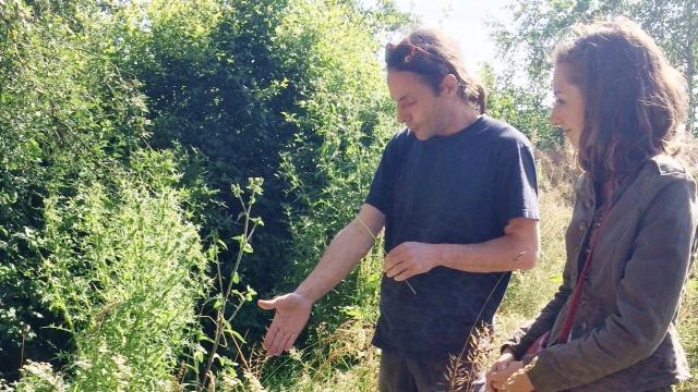 photo patrick jezéquel, ici avec emma plantin de la clé du champ, travaille, avec 16associations communales, à la défense des pollinisateurs sauvages sur la zi de mivoie 2. © ouest-france