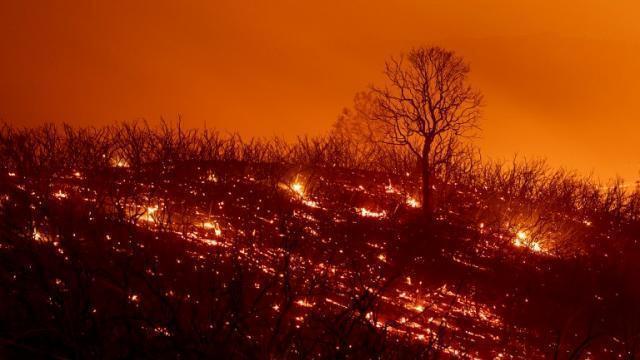 USA. Mendocino Complex, l\'incendie le plus vaste de l\'histoire de la ...