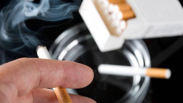 photo la mairie d'yvetot interdit de fumer devant ses six établissements scolaires. © photo d'illustration/archives
