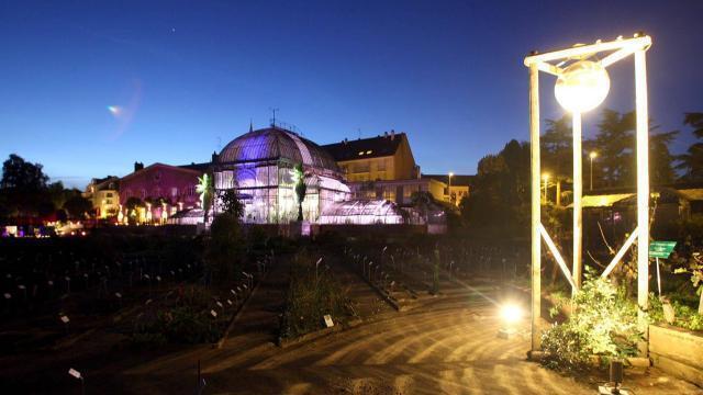 Nantes. Rêver à la nuit tombée au Jardin des plantes ...