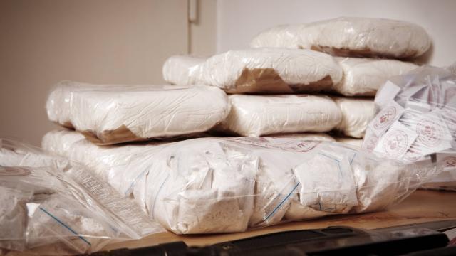 Drogue. 680 kilos de cocaïne saisis au Havre - maville.com