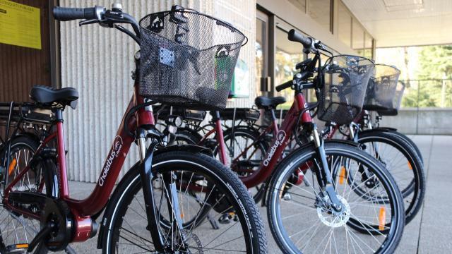 Cholet. Des vélos électriques disponibles à la location - maville.com